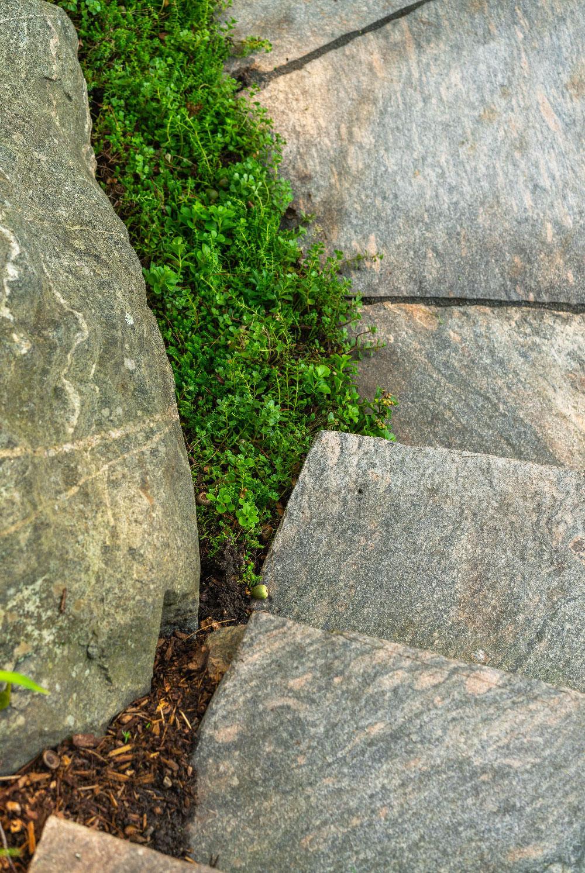 stone stairs upclose